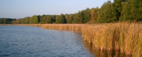 Riebener See