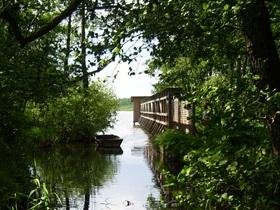 Riebener See - Steg