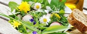 Kulinarischer Kalender - Frühling