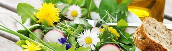 Frisches essen im Frühling